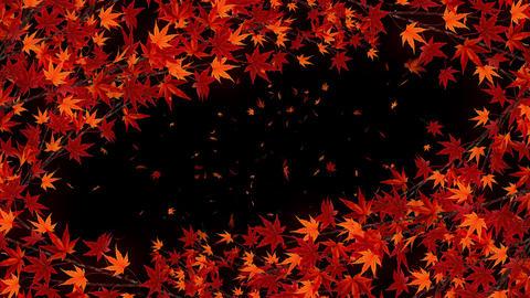 Autumn Leaves Falling on Glittery Background, Maple Tree, Loop Animation Animation