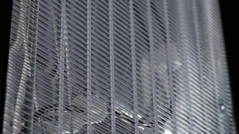 Macro Fridge back with Refrigeration Unit Included Evaporator ライブ動画