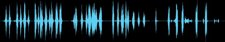Dogs Sound 2