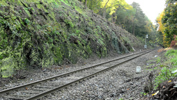railway line in the countryside - trees Footage
