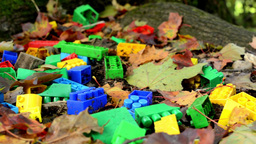 box of bricks (toy) in autumn park - fallen leaves - closeup Footage
