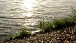 sunrise - river bank (grass) - reflection sun in water Footage