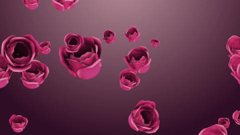 Falling pink roses with beautiful background Footage