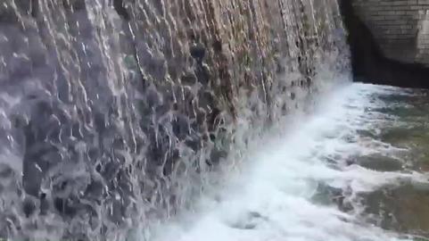 Cheonggyecheon ビデオ