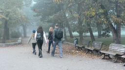 autumn park (trees) - path - people(family) walking - morning mist - fallen leav Footage