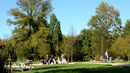 Autumn park (trees) - people walking - grass - family and friends Footage