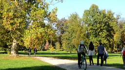 Autumn park (trees) - people walking (relax) and cyclists - path - fallen leaves Footage