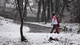 People walking in the alleys of a park covered with snow 2 Footage