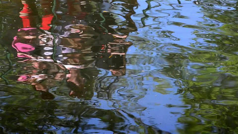 Reflection rowing boats seen the greenish water of a lake near forest 1 Footage
