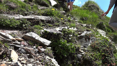 Feet Of Tourists Who Climb A Grassy Path On A Mountain Path 3 stock footage
