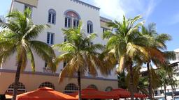 USA Florida Miami Beach green palm trees and whitewashed Art Deco facade Footage