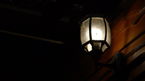 Insect flying around a vintage lamp lights at night Archivo