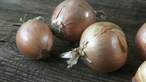 Group of onions on wooden background. Fungus on Onions. Moldy onions Footage