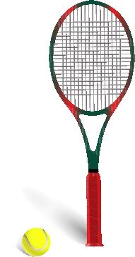 Tennis racket and ball isolated on white Vector illustration Vector