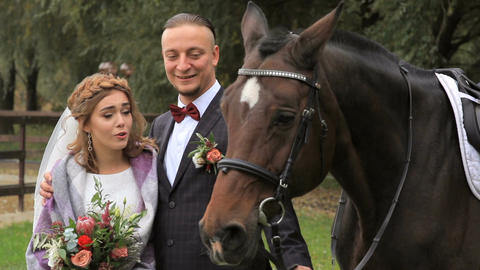 Beautiful newlyweds with a horse in the park GIF
