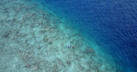v11813 many people young boys girls snorkeling over coral reef with drone aerial Footage