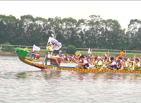 Dragon Boats Racing stock footage