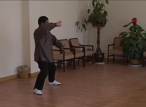 Solo Taiji martial arts demonstration Footage