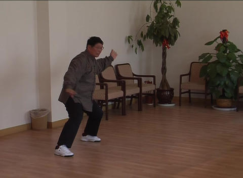 Solo Taiji martial arts demonstration Stock Video Footage