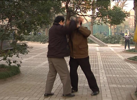 Two martial artists sparring in Shanghai park Stock Video Footage