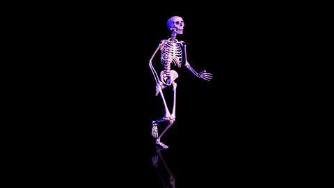 Skeleton Circles Loop Stock Video Footage
