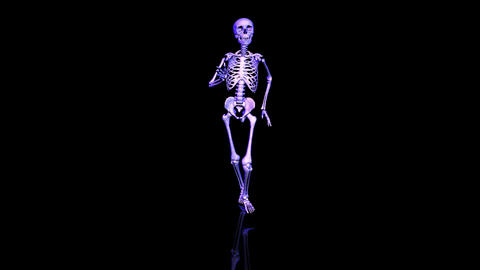 Skeleton running. Loop. Front Animation