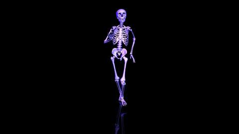 Skeleton running. Loop. Front Animation