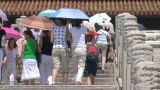 Chinese people climbing stairs at Forbidden City, Beijing Footage