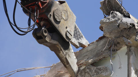crane munching01 Stock Video Footage