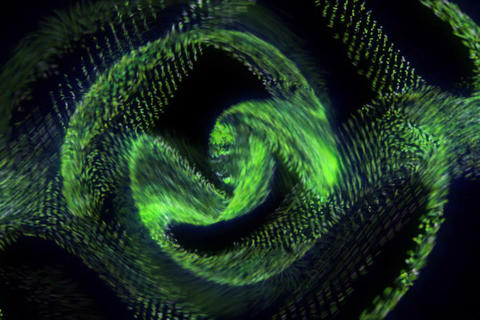 3D Spiral Particles : VJ Loop 337 Stock Video Footage