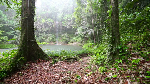 Waterfall at borneo rainforest Footage