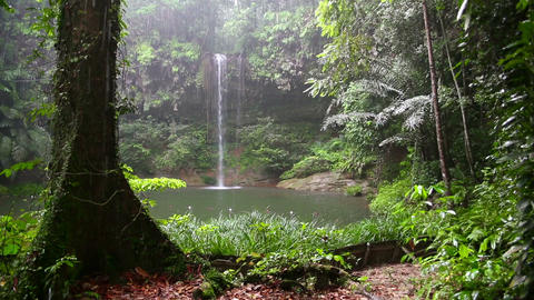 Waterfall at borneo rainforest Stock Video Footage
