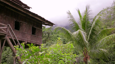 Tribal borneo houses Stock Video Footage