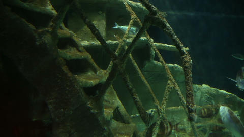 Sunken Ship at deep underwater Stock Video Footage