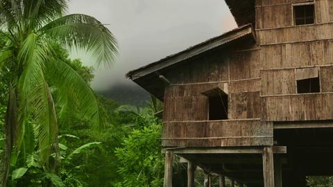 Tribal borneo houses Footage