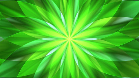 Abstract flower design Animation