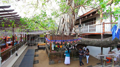 SRI LANKA - MARCH 2012: people praying in temple Stock Video Footage