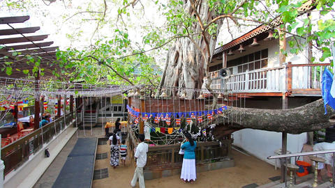 SRI LANKA - MARCH 2012: people praying in temple Footage