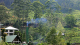 Smoke And Factory In Forest stock footage