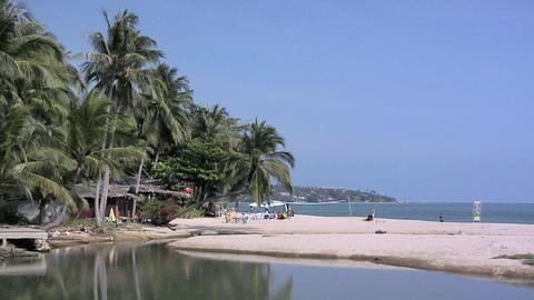 Lamai Beach, Koh Samui Live Action