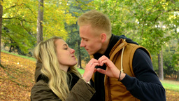 Young Model Couple In Love - Autumn Park(nature) - Happy Couple - Couple Forms A stock footage