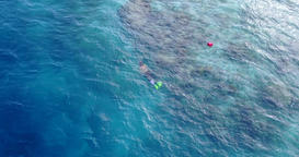 v11904 many people young boys girls snorkeling over coral reef with drone aerial Footage