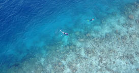 v11784 many people young boys girls snorkeling over coral reef with drone aerial Footage