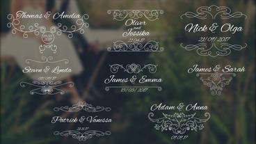 8 Wedding Titles V2 Premiere Pro Template