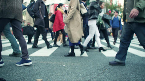 渋谷, スクランブル, 交差点, 人混み, 雑踏, 足元, 歩く, イメージ, 旅行, 旅, インバウンド, 観光客, 問題, 高齢化社会, 振り込め詐欺, ビデオ