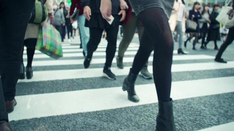 intersection, walking, traffic jam, crosswalk, tokyo, shibuya, japan, blur, ライブ動画