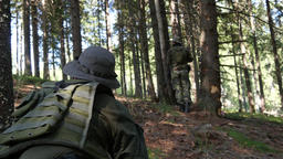 Militaries standing on the shelter of a fir-tree forest 29 Footage