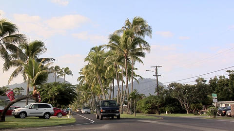 POV on a Road in Kailua, Hawaii Live Action