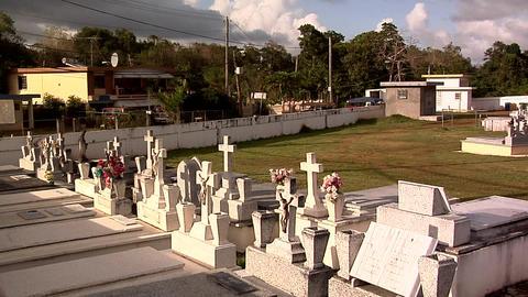 Small Cemetery near Arecibo Live Action