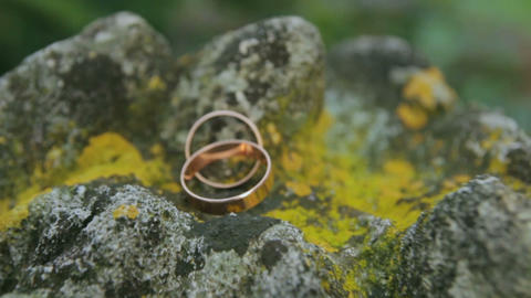 Wedding rings on a stone Footage